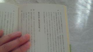 201111010838000.jpg