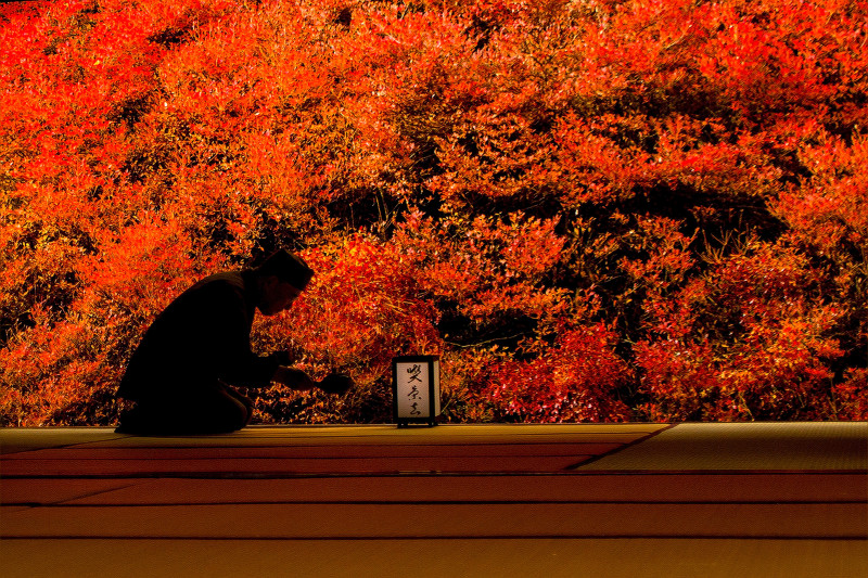 6260安国禅寺800.jpg