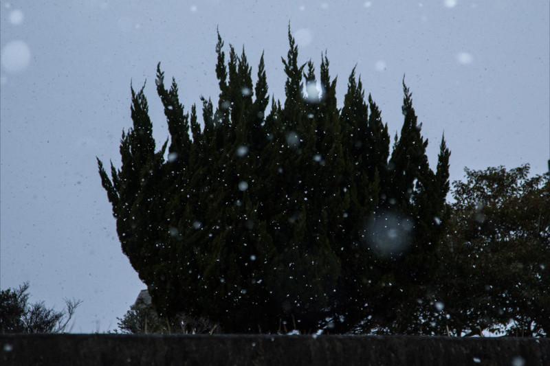 8871雪800.jpg