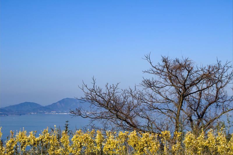 0412竜王山.jpg
