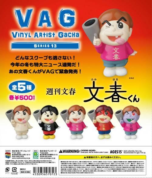 VAG13-bunsyu.jpg