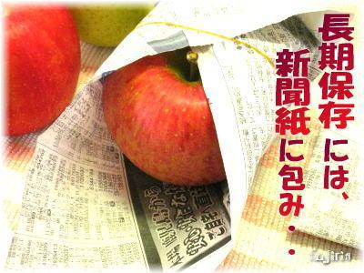 りんご保存4