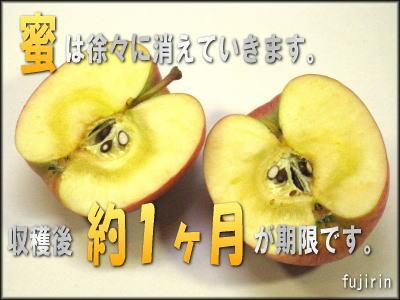 蜜入り林檎1