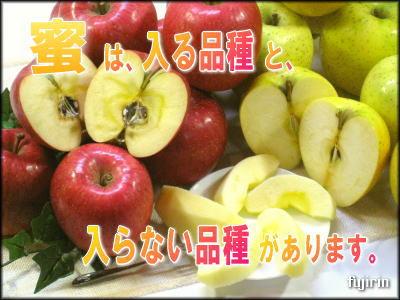 蜜入り林檎3