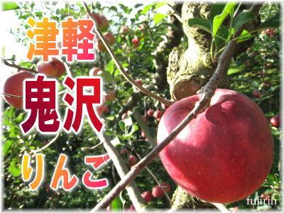 津軽鬼沢りんご