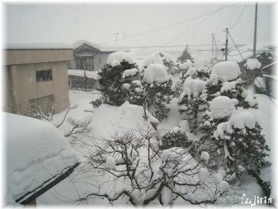 屋根からの冬景色