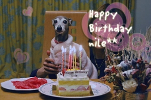 *〜ナイルの11歳の誕生日1〜*