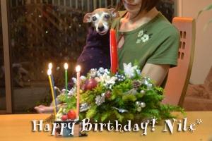 *〜ナイルの誕生日3〜*