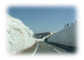 志賀高原の雪の壁