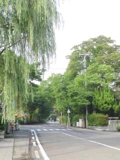130921nakado_bashi.jpg