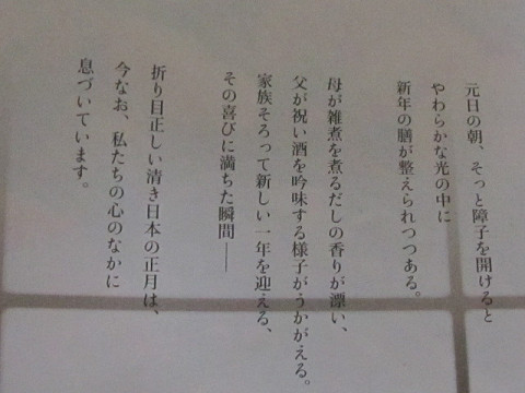 IXY200IS新聞広告文字