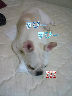 こ_0001.jpg