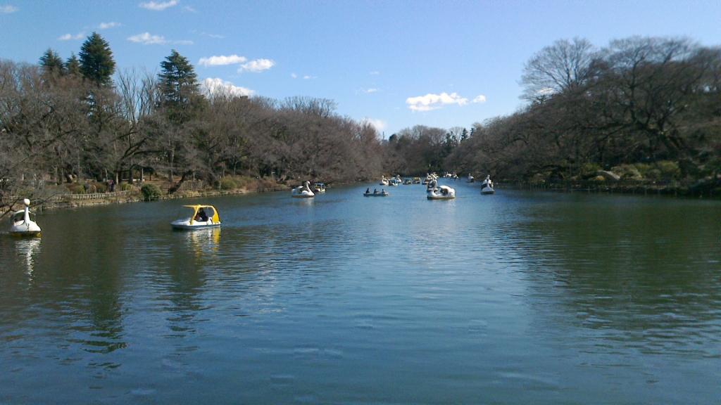 井の頭公園の池3