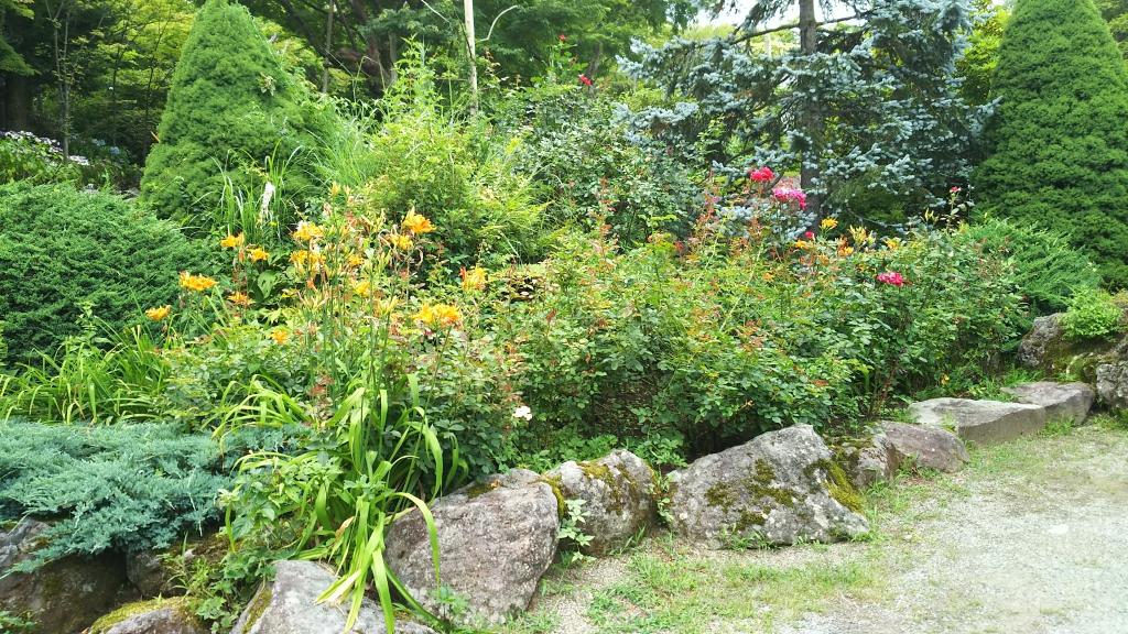箱根強羅公園の花1