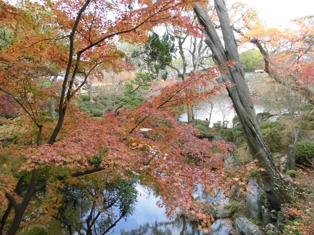 紅葉渓庭園5