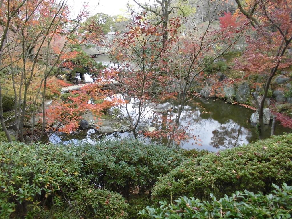紅葉渓庭園6