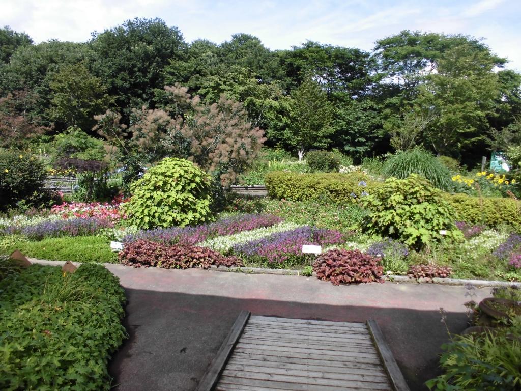 那須花と体験の森1