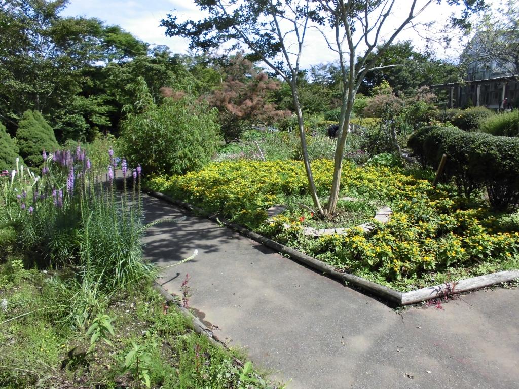 那須花と体験の森4