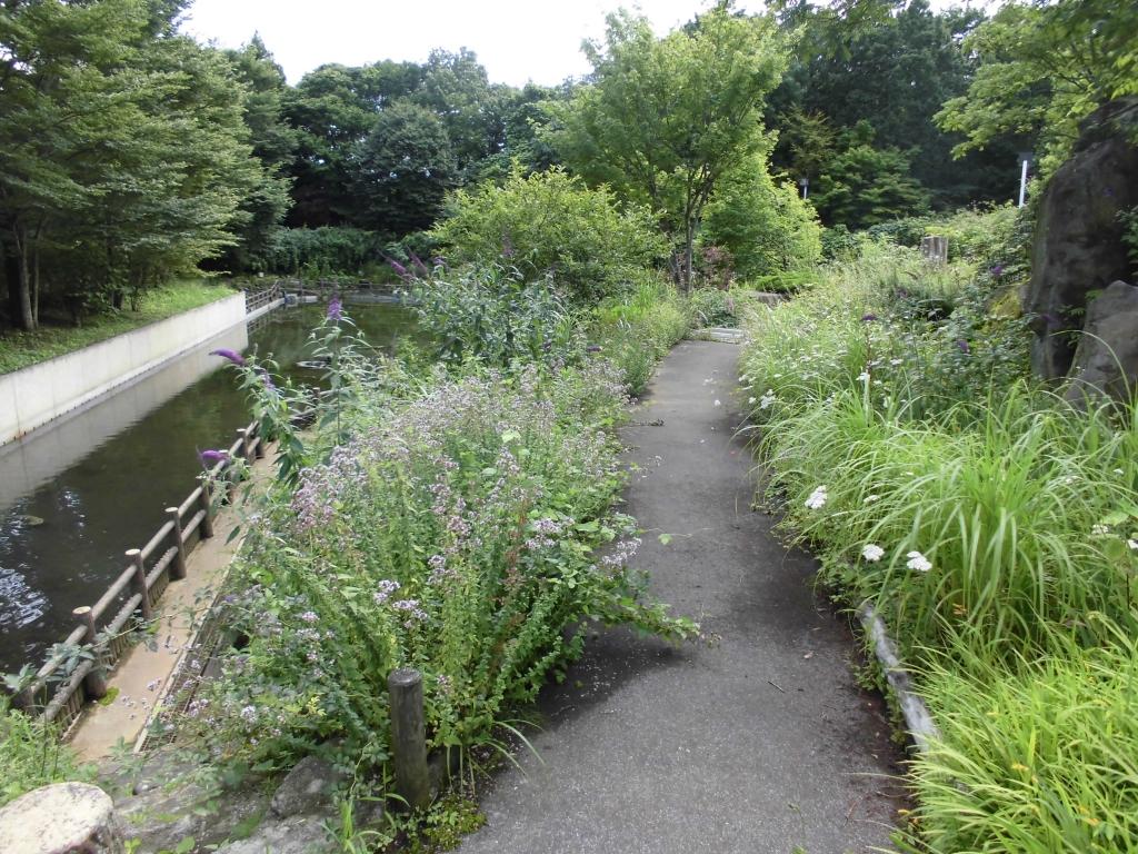 那須花と体験の森9