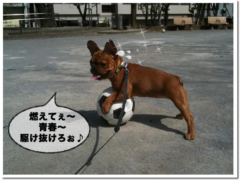 キャプ2ちぇ 5