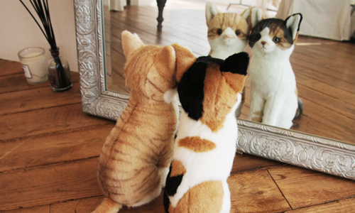 三毛猫とトラ猫のおすわりぬいぐるみ