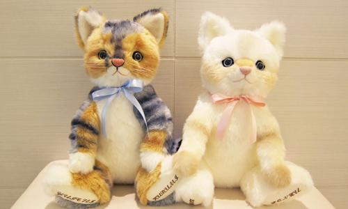 ペット愛猫のウェルカムキャット