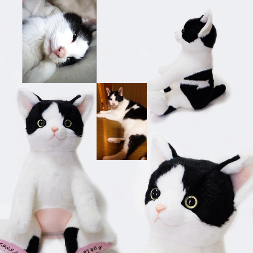愛猫のウェイトドール ウェイトキャット 白黒ハチワレ猫