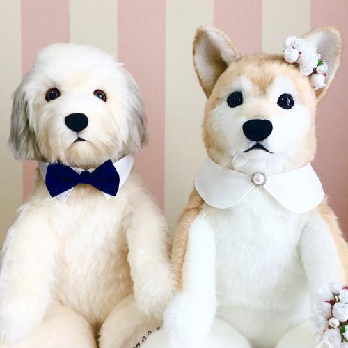 結婚式 愛犬のぬいぐるみ マルチーズ 柴犬