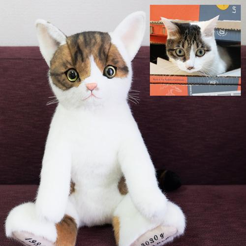 キジトラ ぬいぐるみ 愛猫 ウェイトキャット
