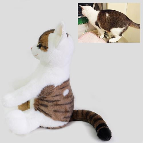 トラ猫のウエイトキャット ウェイトドール