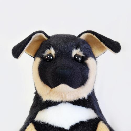 ペットロス ウェイトドッグ 愛犬