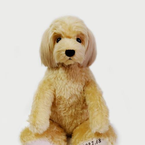 ミックス犬 トイプードル ウエイトドッグ