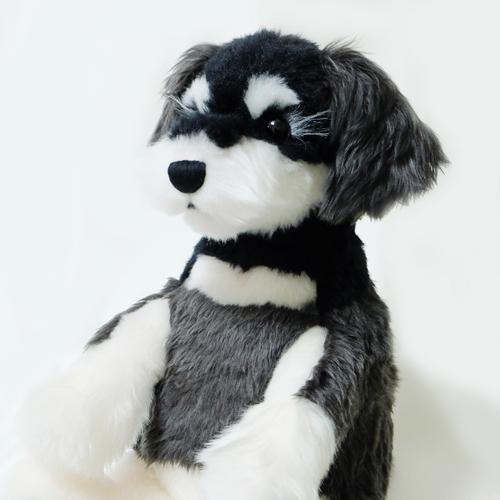 愛犬 ミニチュア シュナウザーのウェイトドール