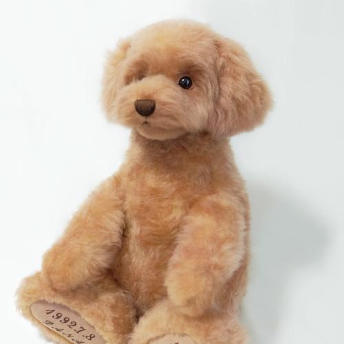 愛犬 トイプードル ウエイトドール ドッグ
