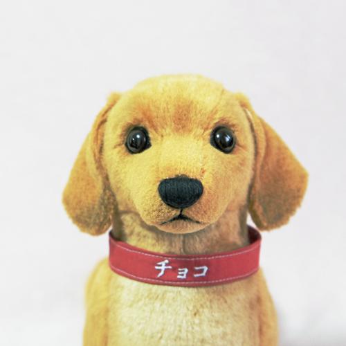 ウェルカムドール 愛犬 ダックスフンド ギフト