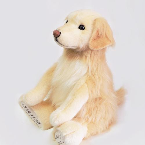 ゴールデン 愛犬ウェイトドール 両親へのサプライズ