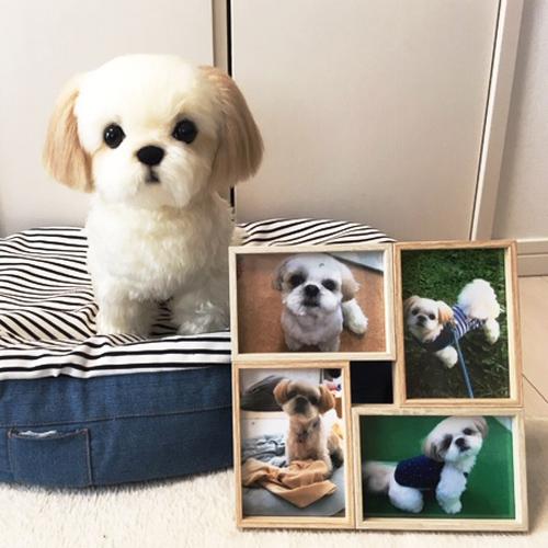 愛犬シーズーのぬいぐるみ ペットロスに 親へのプレゼント