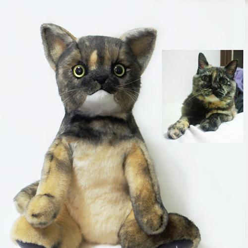 サビ猫 三毛ねこ ウェイトドール 体重 キャット