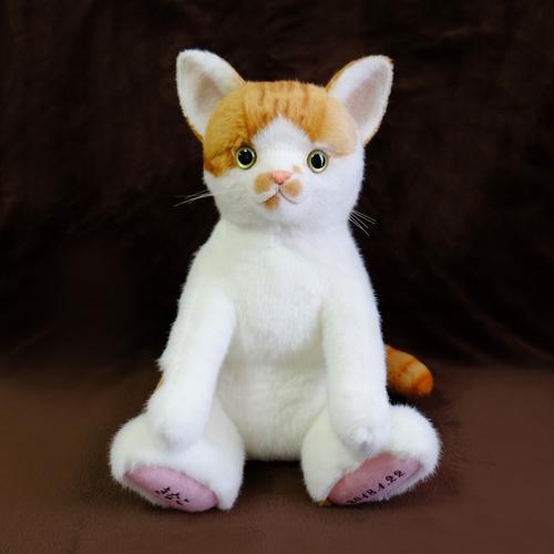 ウェルカムドール 愛猫 ウェイトキャット 白茶猫