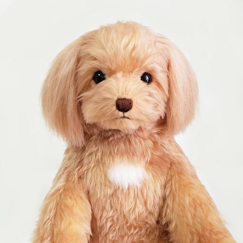 ポメプー 愛犬ポメラニアンプードルのぬいぐるみ ウェイトドール