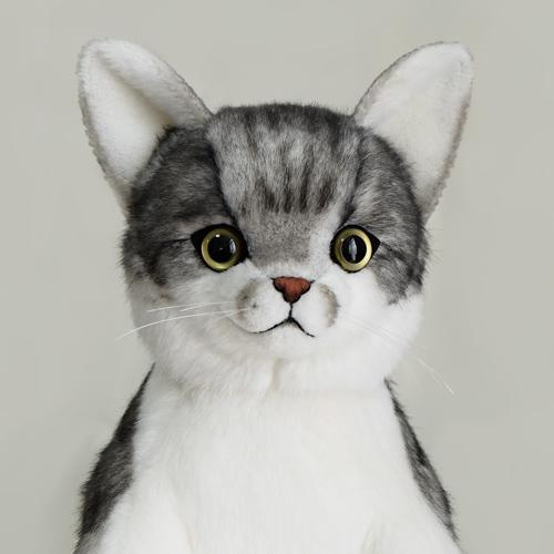 トラ猫 ペット 愛猫のウェイトドール ウェイトキャット