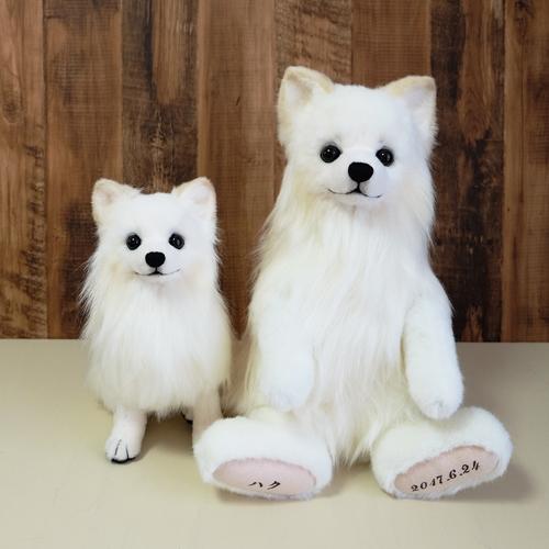 愛犬のぬいぐるみ ポメラニアン白 結婚式 両親へプレゼント