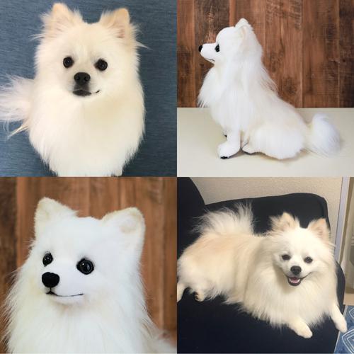 愛犬のぬいぐるみ ポメラニアン白 ウェイトドール
