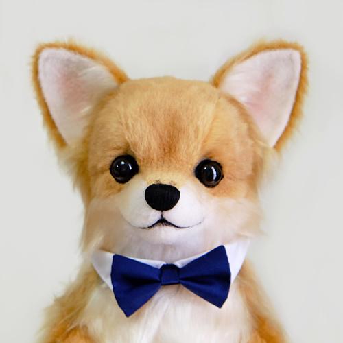 両親へのプレゼント 愛犬ちわわのウェイトドール
