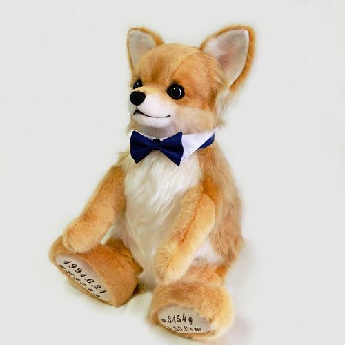 ちわわのウェイトドッグ 愛犬のウエイトドール