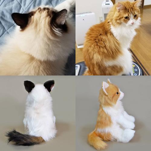 ウェルカムアイテム 愛猫のぬいぐるみ ラグドール ペット