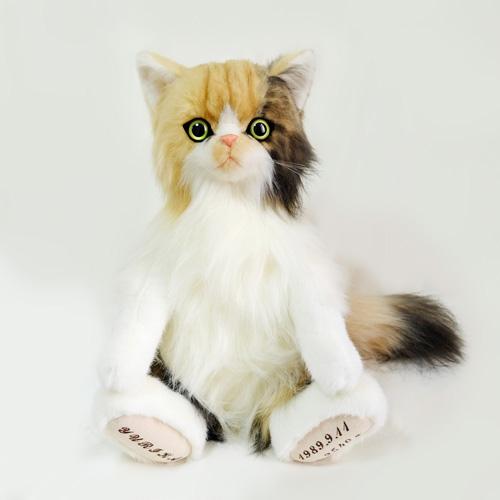 愛猫のぬいぐるみ オーダーメイド エキゾチック