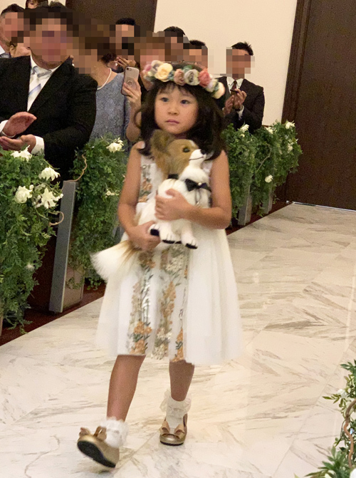 リングガール 愛犬パピヨンのぬいぐるみ 結婚式