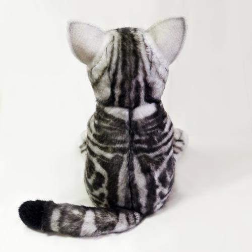 ウェイトドール 話題 愛猫アメショのぬいぐるみ