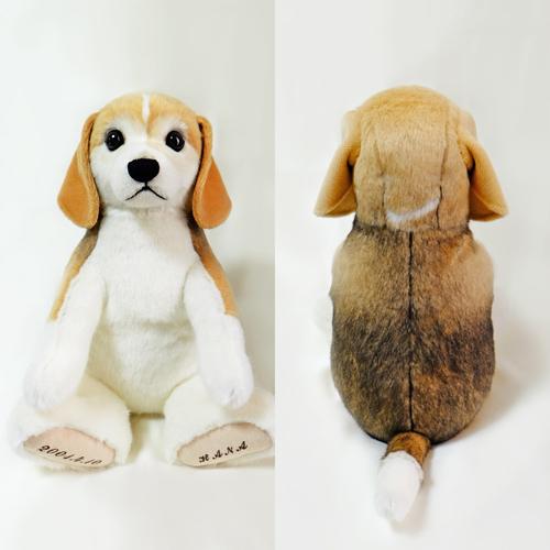 愛犬のぬいぐるみ制作 ビーグルのウエイトドッグ